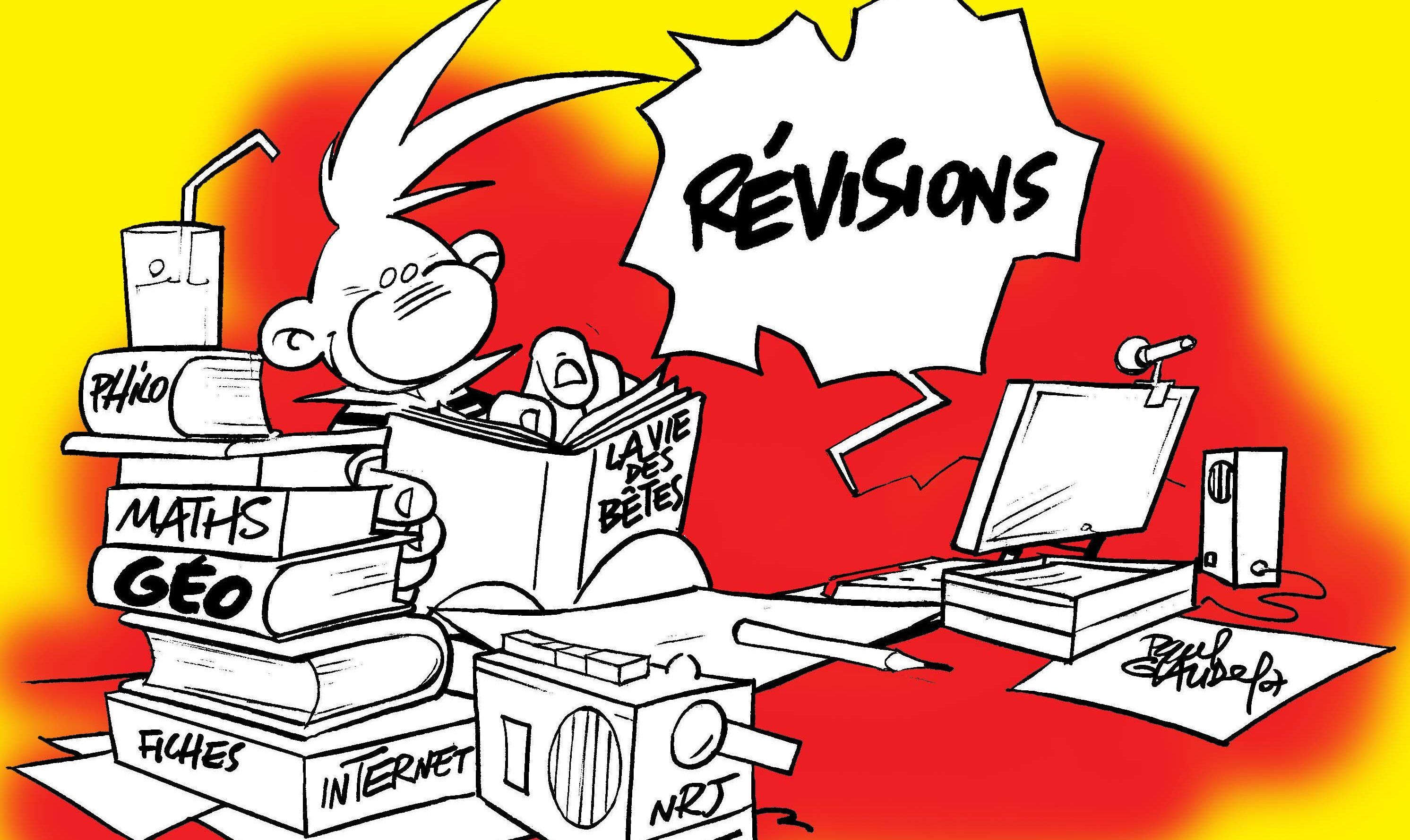 dessin-revisions-BB-rouge.jpg